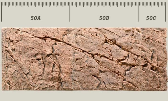 red_gneiss_50_all
